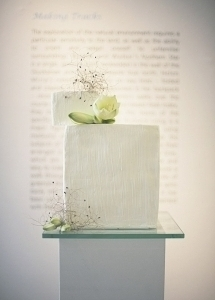 modern_minimalistic_cake